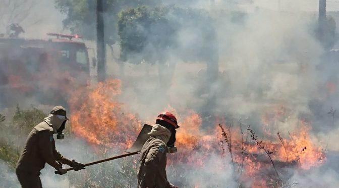 Resultado de imagem para Em dias de tempo seco, Bombeiros alertam: queimada é crime
